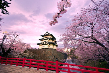Eight Great Reasons to Look East: Studying in Japan