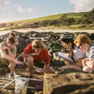 Participate in this Sustainability Challenge to win an internship in New Zealand